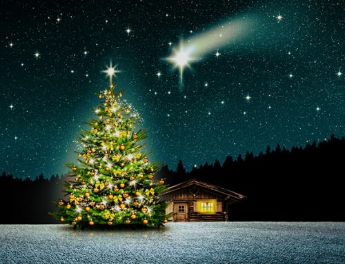 All spruced up – the history of Christmas lights